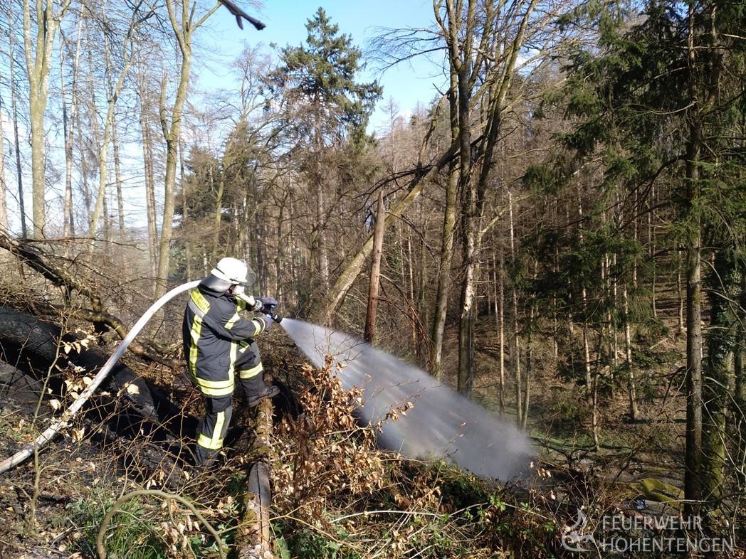 Waldbrand / Flächenbrand